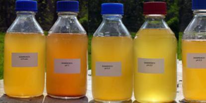 Urine storage, different kinds and colors of urine, urine drink, urine therapy