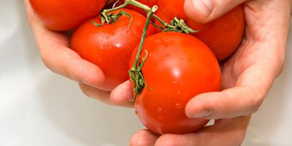 cooking, art of doing, women, she knows, tomato sauce recipe, raw foods, organic healthy cooked foods, fresh vegetables
